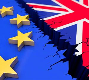 brexitwebsmall